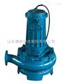 污水泵 潜水排污泵 博山水泵 博泵科技 泵业名城