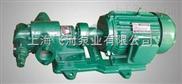 飞河BBG-摆线齿轮油泵|上海齿轮油泵