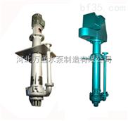 65QV-SP液下渣浆泵