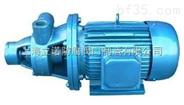 W型旋涡泵 32W-30