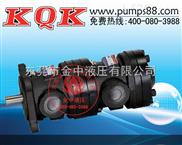 液压油泵-双联定量叶片泵厂家