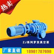 ZJ系列罗茨真空泵,四川ZJ罗茨真空泵生产厂家,明峰