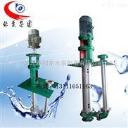 25TL-25-河北新祁东立式防腐液下泵25TL-25高分子塑料泵 不锈钢防腐泵 耐酸耐碱耐磨