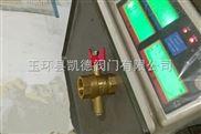 DN15热力表配套红柄测温球阀